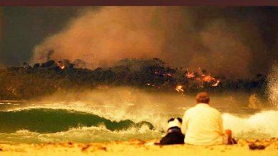 حرائق-الغابات-الاسترالية-ضبابية-السماء-،-الدخان-ألغت-العديد-من-الرحلات-الجوية