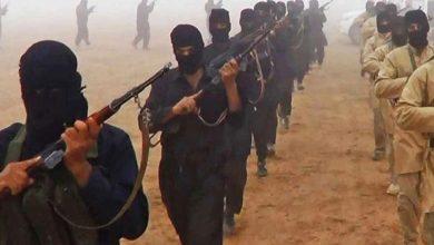 العديد-من-الإرهابيين-ينشطون-في-بالاكوت-مرة-أخرى-،-وهذا-تدريب-إرهابي-خطير