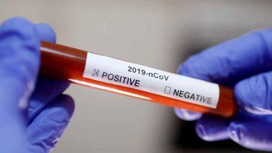 فيروس-كورونا-يتسبب-في-فوضى-وتوقف-الأنشطة-الانتخابية-في-زيمبابوي