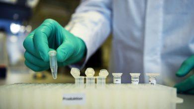 الفيروس-التاجي:-تجربة-لقاح-يجري-في-الصين-،-بعض-النتائج-الأولية-مثل-هذا