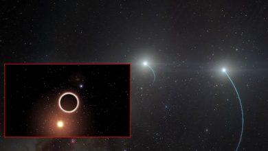 يجد-الفلكيون-نجاحًا-كبيرًا-،-ويجدون-الثقب-الأسود-الأقرب-إلى-الأرض
