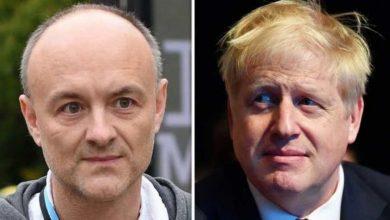 كبير-مستشاري-رئيس-الوزراء-البريطاني-يكسر-كورونا-لوك-داون-،-المعارضة-تسعى-للرد-من-جونسون