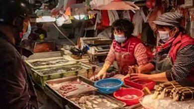 فيروس-كورونا-الموجود-في-سوق-المأكولات-البحرية-واللحوم-في-الصين-ينصح-الناس-بعدم-تناول-الأسماك