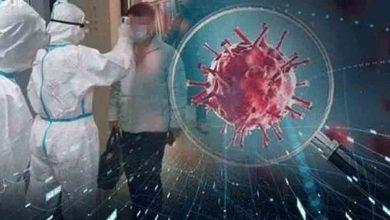 تضاعف-عدد-مرضى-فيروس-الهالة-في-6-أسابيع:-منظمة-الصحة-العالمية