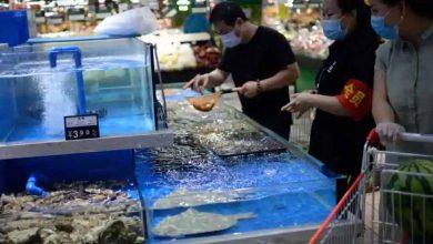 فيروس-كورونا-على-قيد-الحياة-على-الأطعمة-المجمدة-في-الصين-،-تنبيهات-وزارة-الصحة