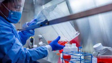 جاءت-الأخبار-السارة-وسط-تزايد-مخاطر-الإصابة-بفيروس-كورونا-،-وظهرت-هذه-النتائج-في-الدراسة