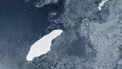 أجراس-الإنذار-80-مرة-أكبر-جبل-جليدي-من-مانهاتن-،-قد-يقع-العالم-في-ورطة