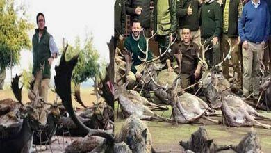 البرتغال:-قتل-540-حيوانا-على-يد-صيادين-في-إسبانيا-،-واشتعلت-النيران-بعد-مشاهدة-الصور