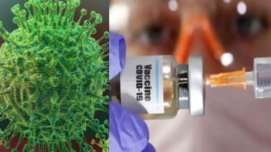 بشرى-سارة:-اخترع-العلماء-جزيئات-مثل-الفاصوليا-لفول-فيروس-كورونا-من-سيوقف-ويقتل-covid-19