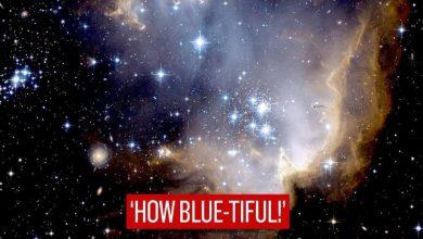"""شاركت-وكالة-ناسا-صورة-لمجموعة-النجوم-الصغيرة-التي-يبلغ-عمرها-5-ملايين-عام-،-وكتبت-""""كم-هي-زرقاء!"""""""