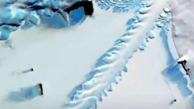 شخصية-غريبة-مغطاة-بطبقة-جليدية-شوهدت-في-أنتاركتيكا-،-قلق-العلماء-أيضا