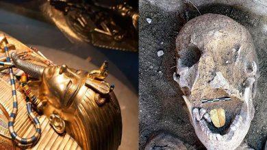 يقدر-أن-يكون-بقايا-الملكة-كليوباترا-،-وهي-مومياء-ذهبية-اللسان-وجدت-في-مصر