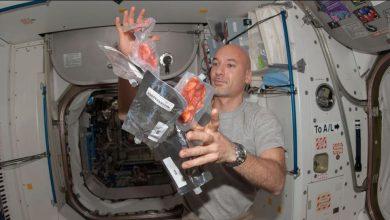 تحدي-الغذاء-في-الفضاء-العميق:-تحدي-ناسا!-أعط-فكرة-جديدة-فريدة-عن-إنتاج-الغذاء-في-الفضاء-واحصل-على-5-ملايين-دولار