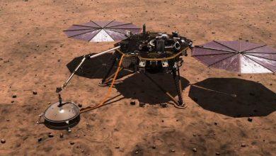 nasa-mars-rover:-big-brother-'insight'-جاهز-للترحيب-بـ-nasa-rover-على-المريخ-،-تعرف-على-دور-mars-insight