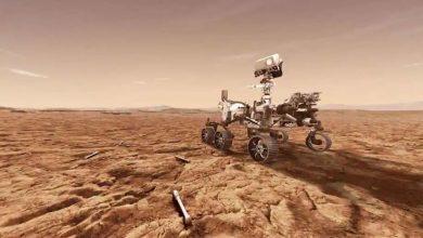 هبط-المسبار-روفر-التابع-لناسا-على-سطح-المريخ-،-ولعب-عالم-من-أصل-هندي-دورًا-مهمًا-في-المهمة