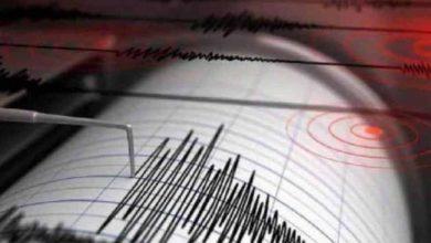 زلزال-نيوزيلندا:-ضرب-نيوزيلندا-زلزالا-للمرة-الثالثة-خلال-8-ساعات-،-بقوة-بمقياس-ريختر-8.1
