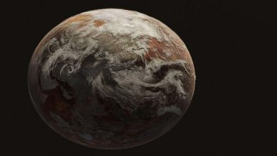 الحياة-على-الأرض:-كشف-كبير-للعلماء!-ستكون-إمبراطورية-البكتيريا-على-الأرض-،-وسوف-ينتهي-البشر-والنباتات