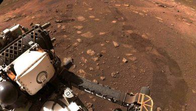 nasa-perseverance-rover:-percussion-rover-،-الذي-ركض-لأول-مرة-21-قدمًا-على-الكوكب-الأحمر-،-يتتبع-عجلات-ناسا-على-تربة-المريخ