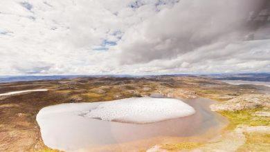 """النباتات-الأحفورية-في-جرينلاند-،-مشروع-الدودة-الجليدية:-""""-كنز-''-قيم-تم-العثور-عليه-في-الحفرة-السرية-تحت-الجليد-في-جرينلاند-،-العلماء-قلقون-من-الدمار"""