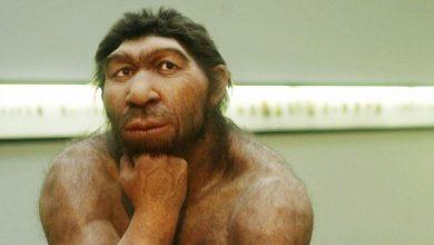 انقراض-الإنسان-البدائي:-اختراق-كبير-للعلماء!-تعرف-على-كيفية-انقراض-البشر-،-فالأرض-قريبة-من-تكرار-التاريخ-المدمر