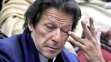 وفد-باكستان-رفيع-المستوى-يتفوق-على-أفغانستان-،-الهبوط-ممنوع
