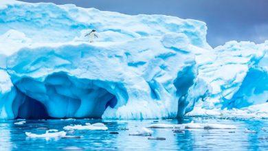 ينهار-34٪-من-الجليد-في-القطب-الجنوبي-،-ويحدث-زلزال-إذا-حدث-هذا