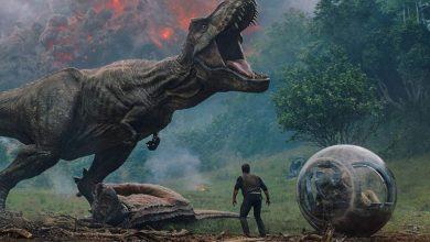 خرج-الحجر-من-معدة-الديناصور-،-وارتفع-إلى-1000-كيلومتر-من-الألم-؛-فوجئ-العلماء-أيضًا