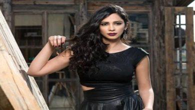 أصيبت-الفنانة-الفلسطينية-ميساء-عبد-الإله-في-هجوم-إسرائيلي-برصاصة-في-ساقها