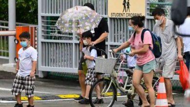 فيروس-كورونا:-سلالة-كورونا-الجديدة-تصطاد-الأطفال-بسرعة:-حكومة-سنغافورة