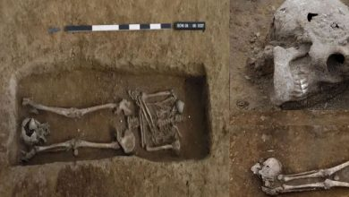 الرومان-البريطانيون:-تم-العثور-على-هياكل-عظمية-عمرها-حوالي-2000-عام-في-المملكة-المتحدة-،-ورؤوس-17-مفقودة-؛-تعرف-على-مطالبات-الخبراء