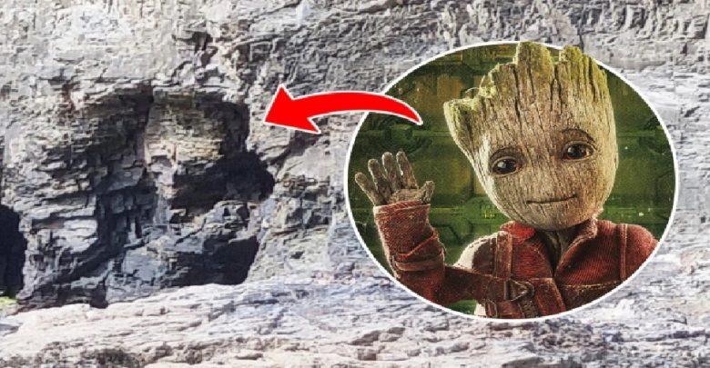 شوهد-وجه-شخصية-سلسلة-marvel-الشهيرة-groot-في-الصخرة-،-شارك-الزوجان-الصورة
