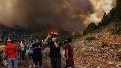 صدمت-تركيا-بحرائق-الغابات-،-وأصبح-الناس-غير-قادرين-على-التنفس-بسبب-الدخان