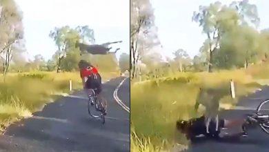 فيديو-فيروسي:-امرأة-كانت-تقود-دراجة-على-طريق-مهجور-،-وفجأة-وقع-هذا-الحادث