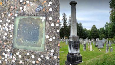 خوفا-من-أن-يُدفن-حيا-،-بنيت-نافذة-في-القبر-أيضا-،-وكانت-المناقشات-بعيدة-وواسعة