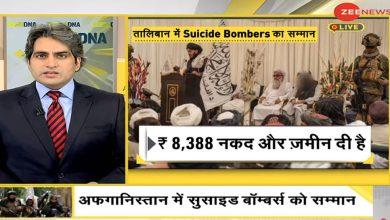 أفغانستان:-تكريم-الانتحاريين-ومكافأة-جعل-العالم-جحيمًا-لـ-'جنات'